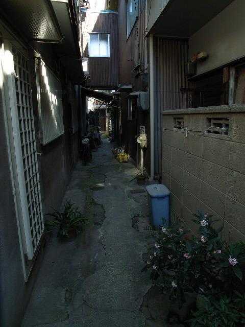 sawakami1203.jpg