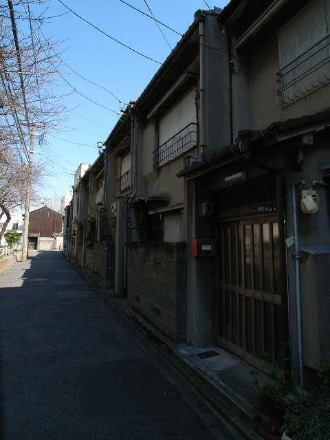sawakami1204.jpg