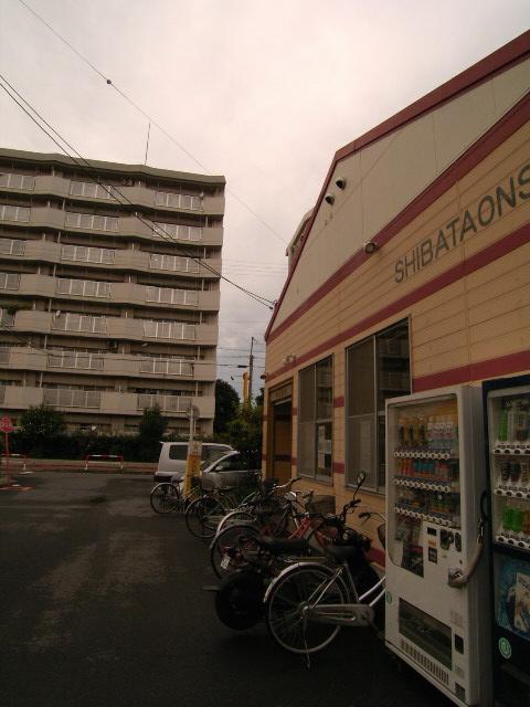 shibataonsen2015.jpg
