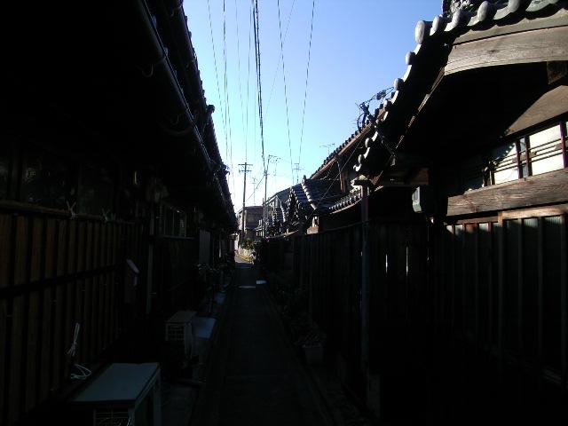 shinkawa0589.jpg