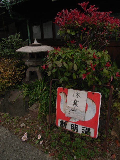 shinmeiyu2274.jpg