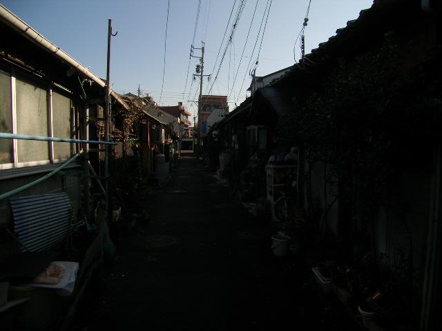 suehiro1121.jpg