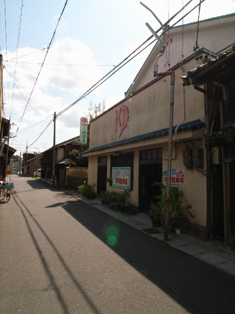 suzuka2502.jpg