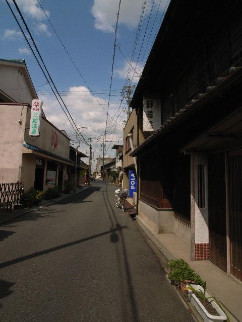 suzuka2504.jpg