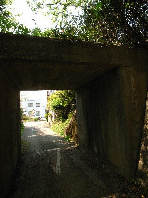 tahara4278.jpg