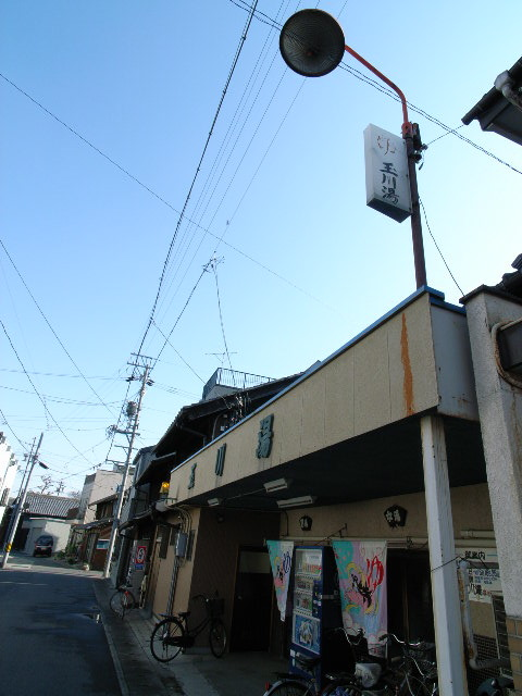 tamagawayu1275.jpg