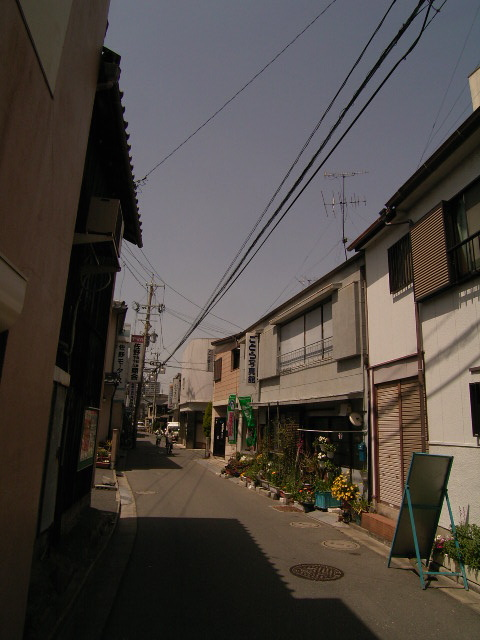 tokiwa1546.jpg