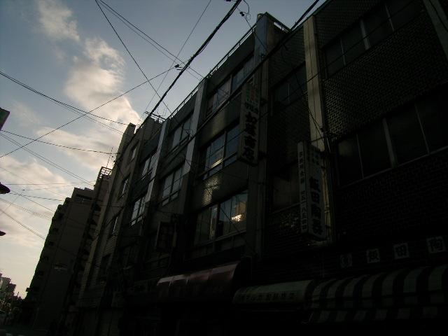 tsubaki0967.jpg