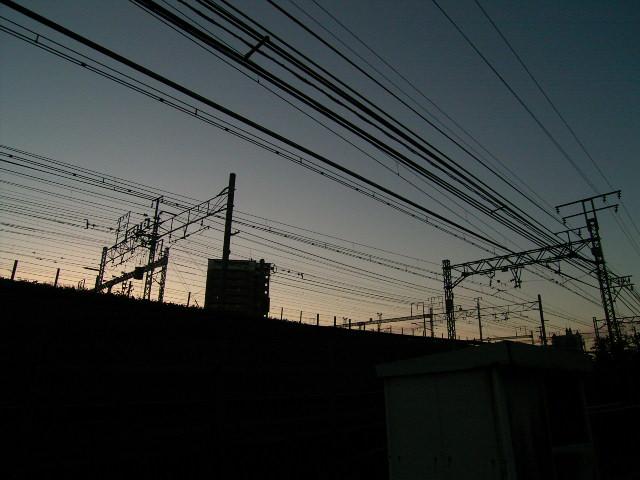 ushijima0035.jpg