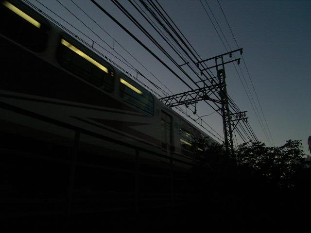 ushijima0037.jpg