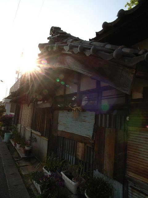 yuraku1455.jpg
