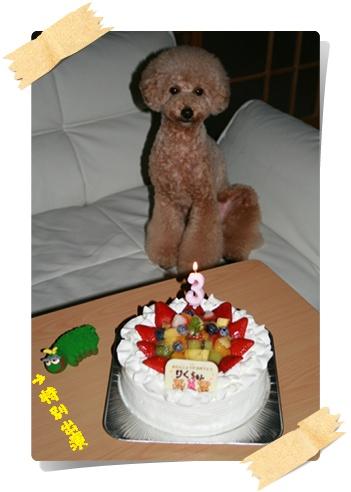 3歳の誕生日2