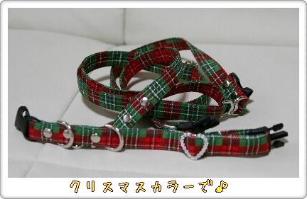 リード&カラー(クリスマス用)