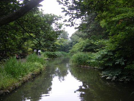 2008_0608横浜多摩川兵庫島自由が丘0025