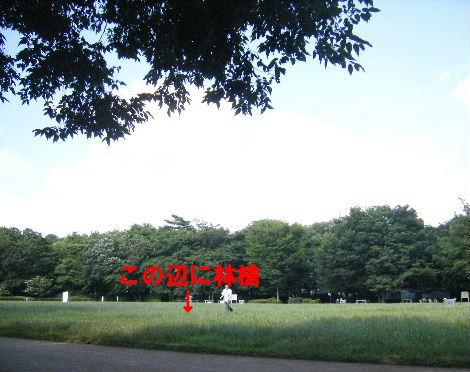 2008_0702吉祥寺0019