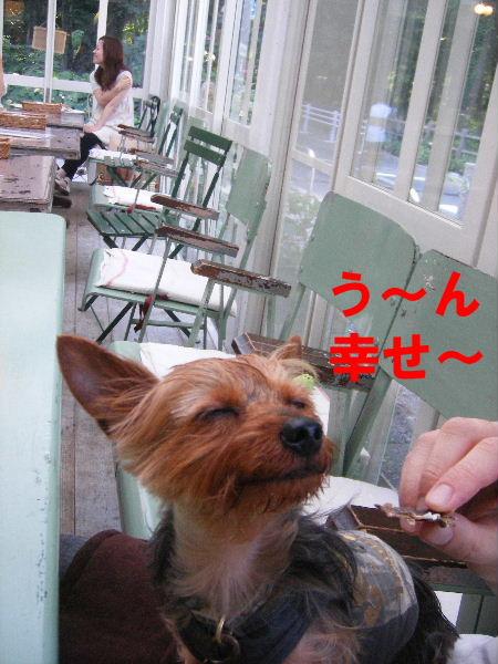 2008_0702吉祥寺0023