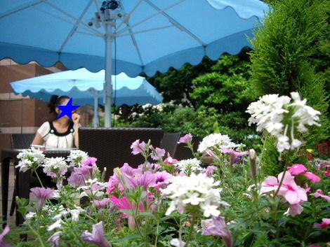 2008_0720麻布十番六本木乃木坂青山
