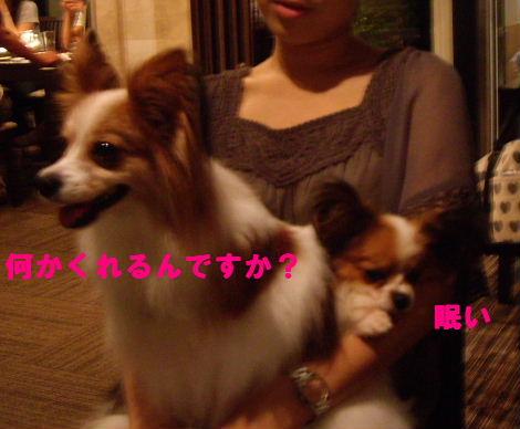 2008_0830飯どころ田深沢0026