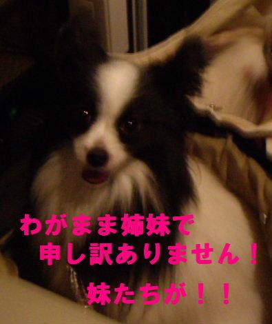 2008_0830飯どころ田深沢0027