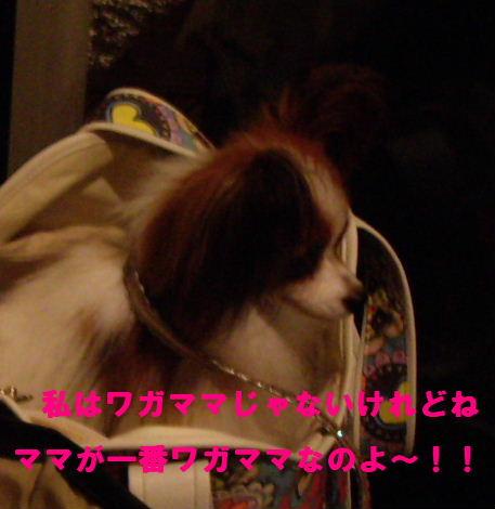 2008_0830飯どころ田深沢0028
