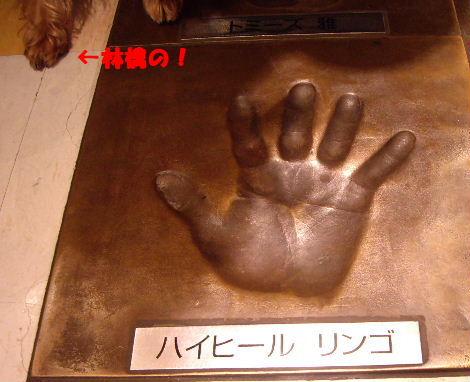2008_1012大阪秋の陣0038
