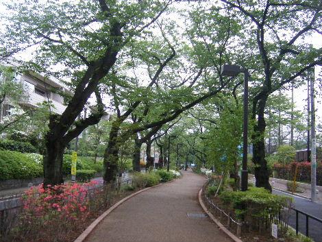 2008_0426yokohama0048.jpg