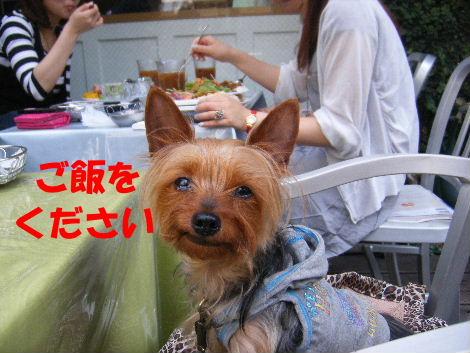 2008_0606ebisudaikanyama0007.jpg