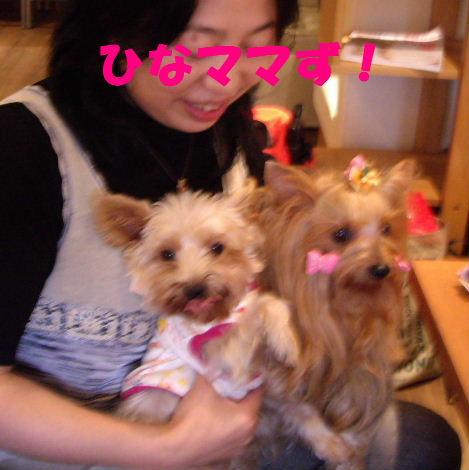 2008_1005komazawa0094.jpg
