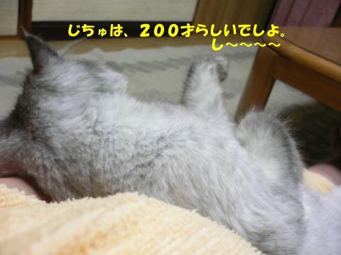 rin105_1.jpg