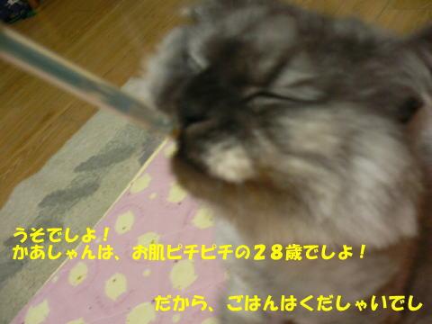 rin106_1.jpg