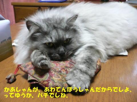 rin251_1.jpg