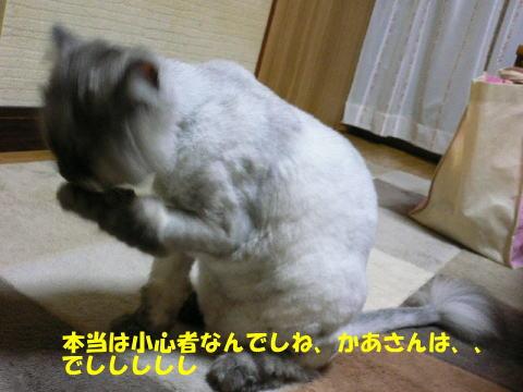 rin333_1.jpg