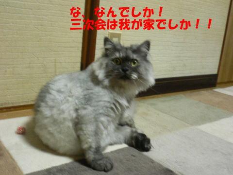 rin398_1.jpg