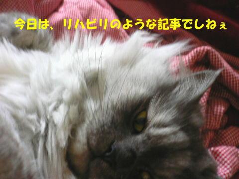 rin422_1.jpg