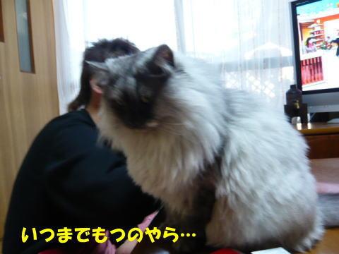 rin467_1.jpg
