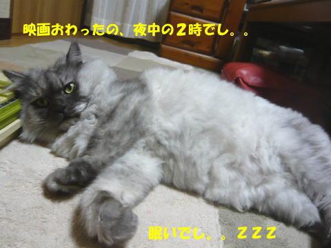 rin644_1.jpg