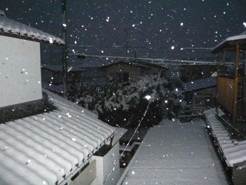yuki2001_3.jpg
