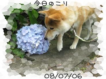 7.6 1