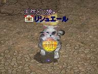 20070320_03.jpg