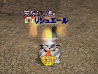 20070320_04.jpg
