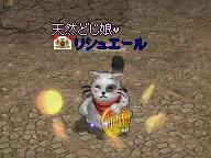 20070320_05.jpg