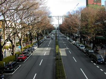 20080214_01.jpg