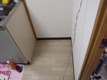 20080927_010.jpg