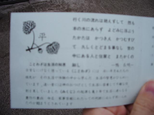 IMGP0386.jpg