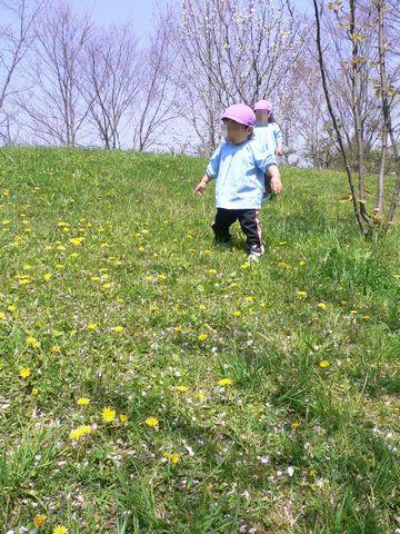 【公園 散歩】 2