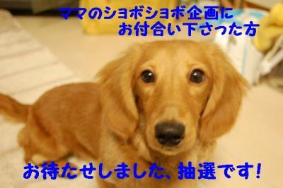 2007_0102(014).jpg