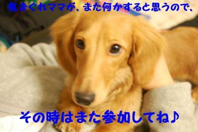 2007_0102(015).jpg