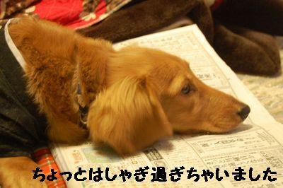 2007_0103(012).jpg