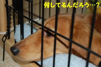 2007_0104(003).jpg