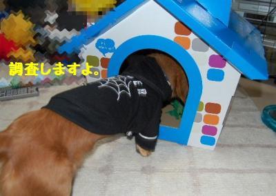 2007_0104(010).jpg